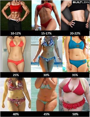 体脂肪率女性
